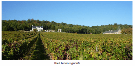 The Chinon vignoble