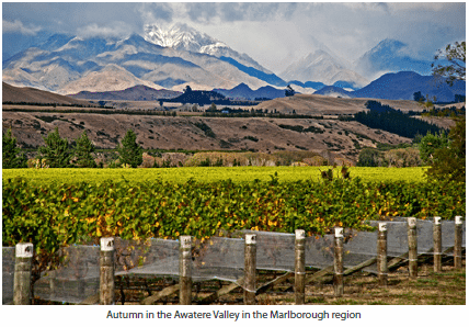 Autumn in the Awatere Valley in the Marlborough region