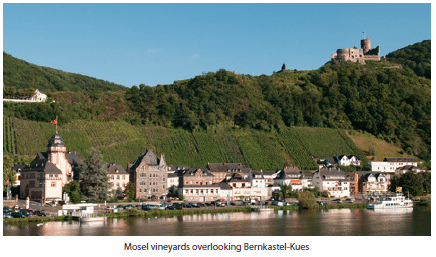 Mosel vineyards overlooking Bernkastel-Kues
