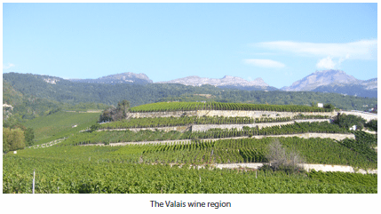 The Valais wine region