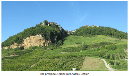 The precipitous slopes at Château Chalon