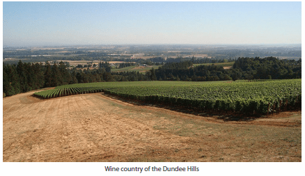 Wine country of the Dundee Hills