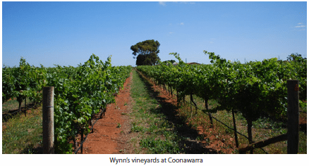 Wynn's vineyards at Coonawarra
