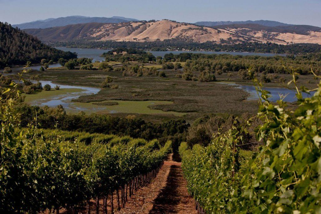 In the past decade, a growing number of boutique producers have been drawn to the area's high elevations and volcanic soils, ideal for high-quality cabernet and sauvignon blanc. Pictured: Vigilance Winery, overlooking Clear Lake, Calif. Photographer: George Rose/Getty Images