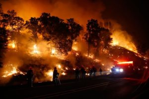 The Valley Fire, which started on Sept. 12, burned wineries to the ground. Here, firefighters combat a backfire on Sept. 13, 2015. Photographer: Stephen Lam/Getty Images