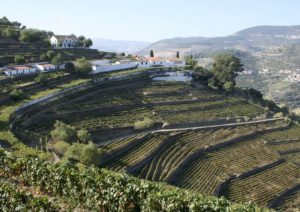Quinta do Noval Douro Port