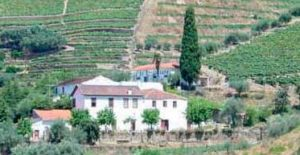Quinta do Passadouro Douro & Port