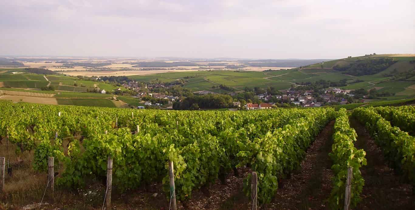 Complimentary Loire Valley Download
